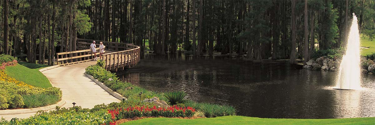Saddlebrook Resort, Wesley Chapel, Florida
