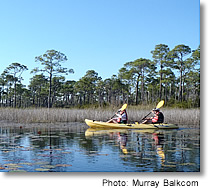 Walco Eco Tours, Murray Balkcom photo, Florida